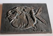 Bronze Platte versteinerter Fisch