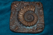 Bronzeplakette mit Ammonit