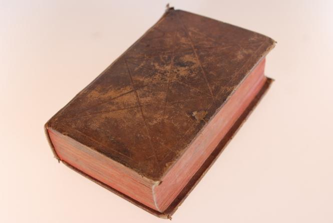 Tägliches Hand=Buch, In guten und bösen Tagen, das ist: Aufmunterung, Gebete und Gesänge